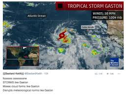 Gaston Meme - tropical storm gaston is bringing a whirlwind of memes to the
