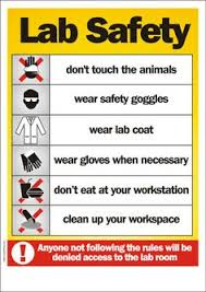 safety symbols and meanings science pinterest symbols and