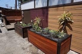 Redwood Planter Boxes by Planter Boxes Santa Monica Los Angeles Venice Beach U2014 Harwell