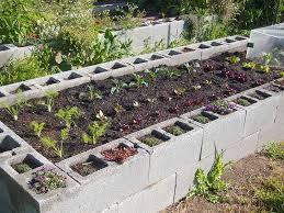 94 best raised bed images on pinterest raised gardens gardening