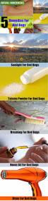 Bed Bug Home Remedies Will Talcum Powder Kill Bed Bugs U2022 Baby Bedroom