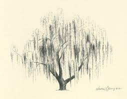 46 best willow tree tattoos images on willow tree