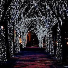 cool white icicle lights 53 best christmas lights images on pinterest christmas lights