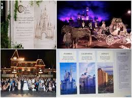 Indian Wedding Planner Book Disneyland Theme Wedding Free Indian Wedding Planning Website