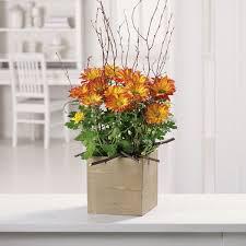 riverside florist plants in riverside nj by riverside floral co