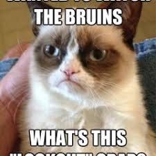 Bruins Memes - funny meme archives page 347 of 982 cat planet cat planet