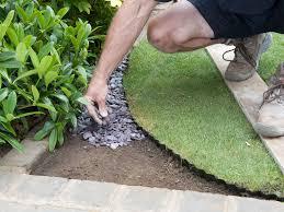 diy landscaping landscape design ideas plants lawn care how to