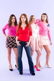 this mean girls group costume is perfect for your group of bad