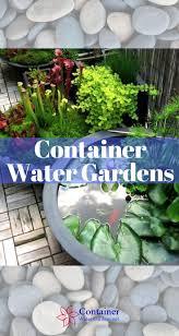 Container Water Garden Ideas Container Water Garden Fish Home Outdoor Decoration