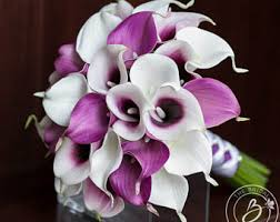 picasso calla calla bouquet cascading bridal bouquet plum wedding