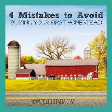 4 mistakes to avoid when you buy your first homestead joybilee farm