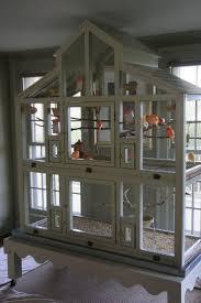 best 25 diy bird cage ideas on pinterest diy parakeet cage diy bird cage seed guard