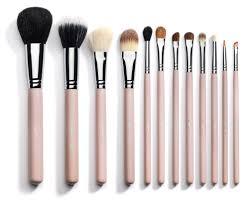 12 piece professional makeup brushes pink