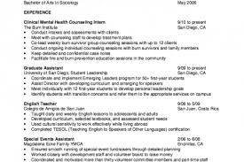 Sample Counseling Resume by Mental Health Counselor Resume Sample Reentrycorps