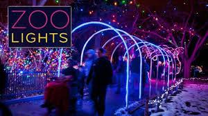 denver zoo lights hours get my perks half off admission at denver zoo lights
