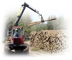 forestry timber harvesting glatfelter pulpwood company