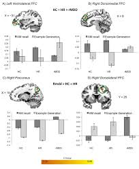 brain sciences free full text functional neuroimaging