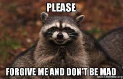 Forgive Me Meme - please forgive me and don t be mad evil plotting raccoon make
