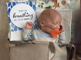 mom creates a beautiful way to celebrate preemie milestones