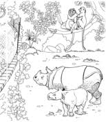 printable zoo animal coloring pages zoo animals coloring pages free printable pictures