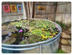 Backyard Fort Worth - thai buddhist goddess statue backyard garden fort worth texas