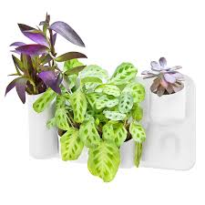 planters that hang on the wall self watering vertical wall mounted planter flower pot one planter