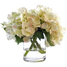 hydrangea white beachcrest home white hydrangea in glass vase reviews wayfair