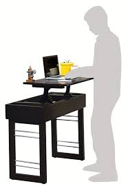 ergonomics where can you purchase a stand up desk in bangalore