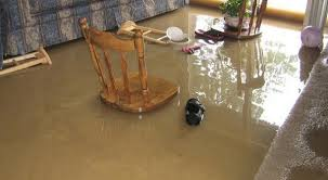 how to fix water damage on wood table how to get rid of water damage learn about the significance of