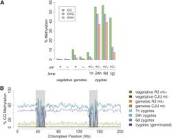 dynamic changes in the transcriptome and methylome of