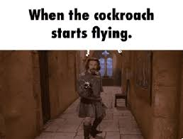 Flying Cockroach Meme - how not to deal with a cockroach handbagmafia