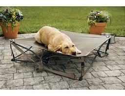 Floating Dog Bed Dog Beds Indoor U0026 Outdoor Dog Beds