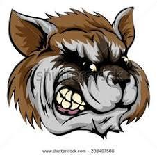 raccoon tattoos inspiring tattoos cartoon raccoon tattoo