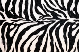zebra print desk accessories animal print desktop backgrounds wallpaper cave