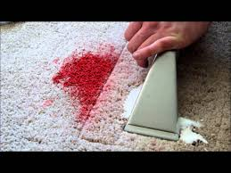 How To Clean Walls With Flat Paint by How To Get Paint Out Of Carpet Youtube