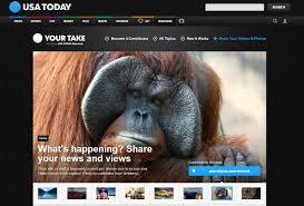 bentley orangutan work samples j u0027s page
