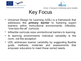 design expert 9 key teacher competences fostering universal design for learning and inclu