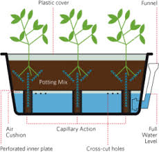How To Make A Self Watering Planter by Growing Smarter Self Watering System 300x285 Png Resize U003d300 285