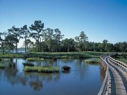 Louisiana lakes images Lake charles photos featured images of lake charles la jpg