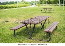 Benches In Park - picnic table park stock photo 359781557 shutterstock