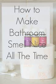 Small Mosquitoes In Bathroom How To Make Bathroom Smell Nice All You Need To Keep Your