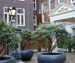 planters interesting large plant containers large plant