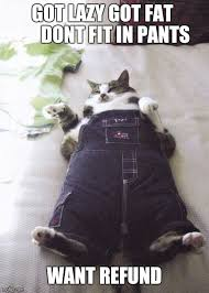 Meme Pants - fat pants meme pants best of the funny meme