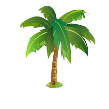 palmier p 1 tests u0026 jeux éducatifs en ligne