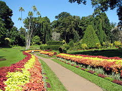 The Royal Botanic Gardens Royal Botanical Gardens Peradeniya