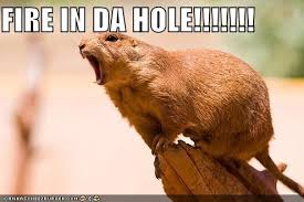 Fire In The Hole Meme - mv k the funny monsta x animal park music onehallyu
