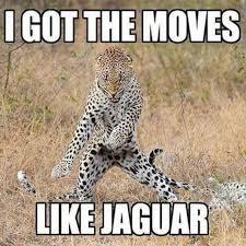 Ford Truck Memes - funny ford truck memes i got the memes like jagur