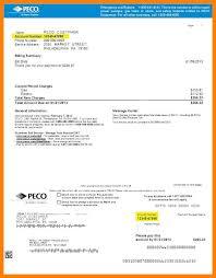 Sample Childcare Resume by 6 Peco Bill Sample Childcare Resume