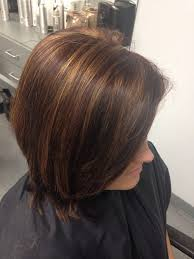 mahoganey hair with highlights the 25 best mahogany highlights ideas on pinterest dark brown