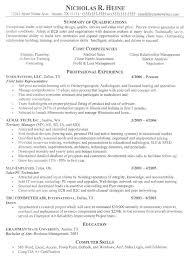 download resume examples it professional haadyaooverbayresort com
